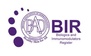 BAD BIR Logo